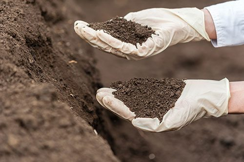 Gloved hands holding piles of soil